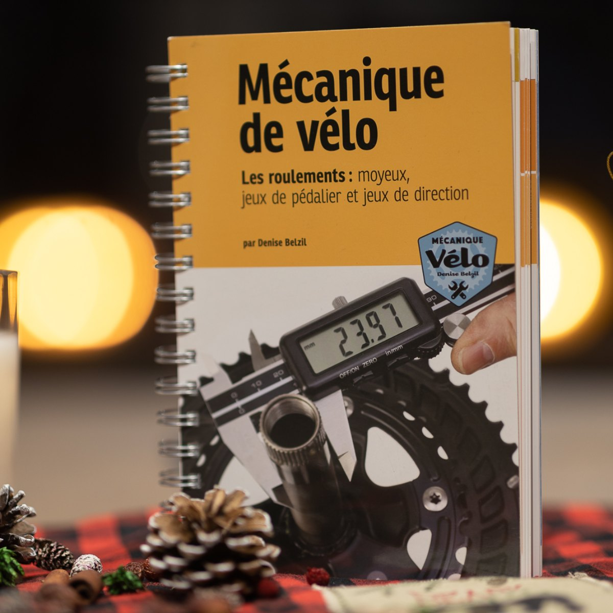 LIVRE DE MECANIQUE VELO - LES ROULEMENTS NIVEAU 1 ET 2